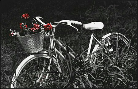 Ken Mattinson. Retired bike (Flickr).