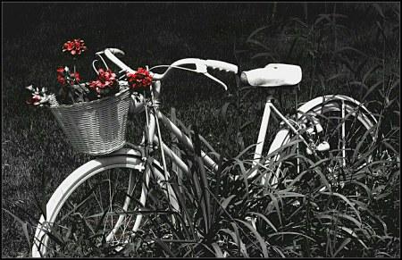 Ken Mattinson. Retired bike (Flickr).